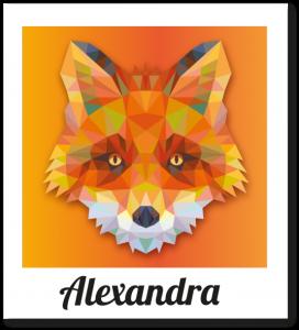 polaroid_alexandra-535x589