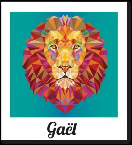 polaroid_gael-535x589