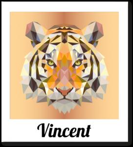 vincent-535x589